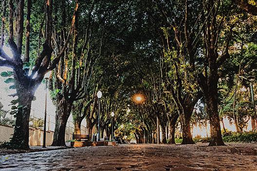 Rua 05 Bulevar dos Oitis Araraquara